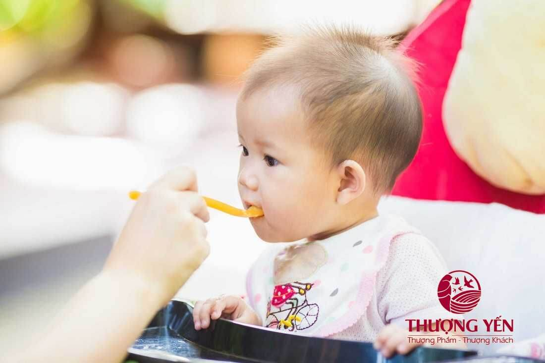 Nước yến cho bé và 1001 những thông tin ba mẹ đừng nên bỏ qua